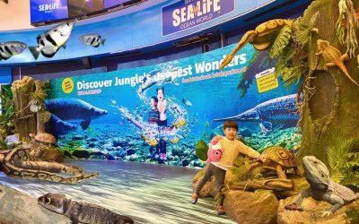 "SEA LIFE BANGKOK ปี 2020 ""Magical Jungle Adventure…เพื่อนรักในป่าลึกสุดมหัศจรรย์"""
